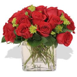 Aydın çiçekçi telefonları  10 adet kirmizi gül ve cam yada mika vazo