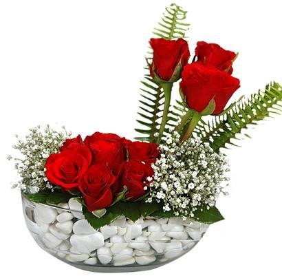 cam içerisinde 9 adet kirmizi gül  Aydın çiçek siparişi vermek