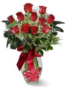 9 adet gül  Aydın internetten çiçek satışı  kirmizi gül