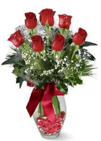 Aydın internetten çiçek siparişi  7 adet kirmizi gül cam vazo yada mika vazoda
