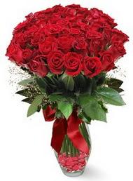 19 adet essiz kalitede kirmizi gül  Aydın 14 şubat sevgililer günü çiçek