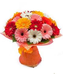 Renkli gerbera buketi  Aydın anneler günü çiçek yolla