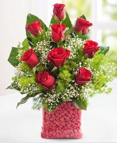 Cam içerisinde 9 adet kırmızı gül  Aydın internetten çiçek satışı
