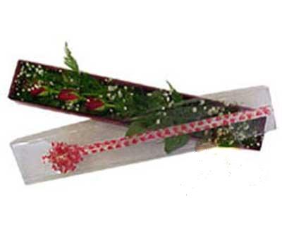Aydın hediye çiçek yolla  3 adet gül.kutu yaldizlidir.