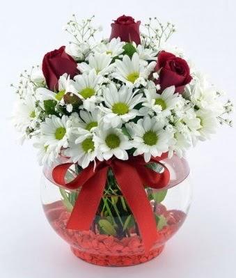 Fanusta 3 Gül ve Papatya  Aydın internetten çiçek satışı