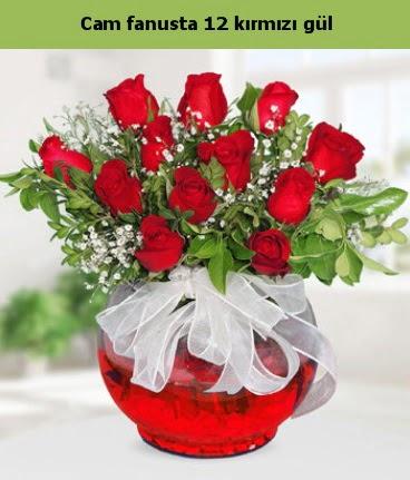 Cam içerisinde 12 adet kırmızı gül  Aydın internetten çiçek satışı