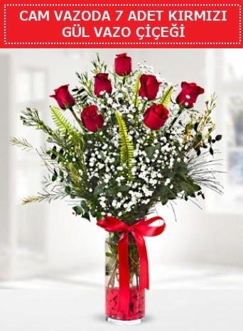 Cam vazoda 7 adet kırmızı gül çiçeği  Aydın çiçek gönderme sitemiz güvenlidir