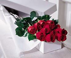 Aydın çiçek satışı  özel kutuda 12 adet gül