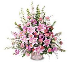 Aydın çiçek siparişi sitesi  Tanzim mevsim çiçeklerinden çiçek modeli