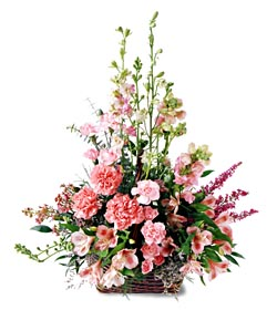 Aydın ucuz çiçek gönder  mevsim çiçeklerinden özel