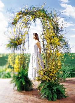 Aydın internetten çiçek satışı  güller ve mevsim çiçegi