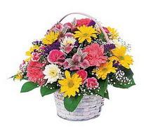 Aydın çiçek , çiçekçi , çiçekçilik  mevsim çiçekleri sepeti özel