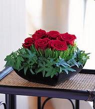Aydın çiçek siparişi sitesi  10 adet kare mika yada cam vazoda gül tanzim