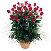 Aydın uluslararası çiçek gönderme  10 adet kirmizi gül cam yada mika vazo