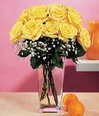 Aydın internetten çiçek satışı  9 adet sari güllerden cam yada mika vazo