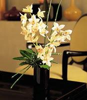 Aydın çiçekçiler  cam yada mika vazo içerisinde dal orkide