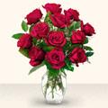 Aydın çiçek yolla  10 adet gül cam yada mika vazo da