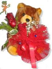 oyuncak ayi ve gül tanzim  Aydın çiçekçiler