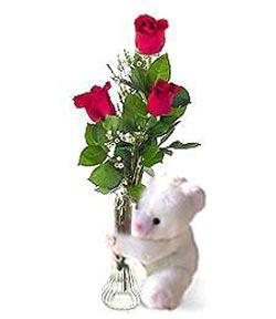 oyuncak ve 3 adet gül  Aydın çiçek siparişi sitesi