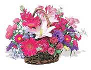 küçük karisik özel sepet   Aydın çiçek online çiçek siparişi