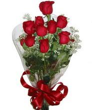 9 adet kaliteli kirmizi gül   Aydın online çiçekçi , çiçek siparişi