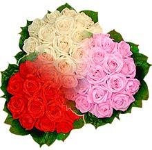 3 renkte gül seven sever   Aydın çiçek , çiçekçi , çiçekçilik