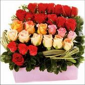 15 adet renkli gül ve cam   Aydın çiçekçi mağazası