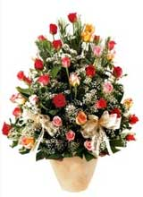 91 adet renkli gül aranjman   Aydın çiçek gönderme sitemiz güvenlidir