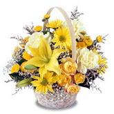 sadece sari çiçek sepeti   Aydın çiçek gönderme sitemiz güvenlidir
