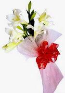 Aydın çiçek , çiçekçi , çiçekçilik  ince vazoda gerbera ve ayi
