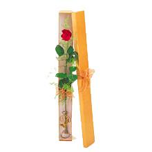 ince  kutuda  1  gül   Aydın çiçek yolla