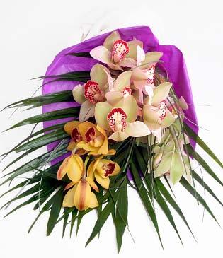 Aydın cicekciler , cicek siparisi  1 adet dal orkide buket halinde sunulmakta
