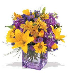 Aydın çiçek mağazası , çiçekçi adresleri  cam içerisinde kir çiçekleri demeti