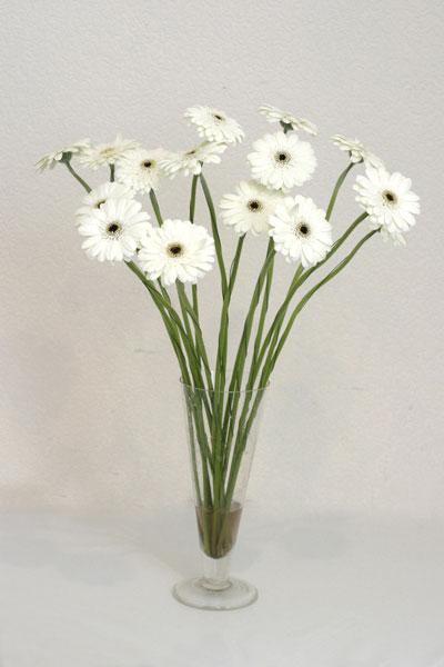 Aydın çiçek mağazası , çiçekçi adresleri  cam vazo içerisinde 17 adet sade gerbera