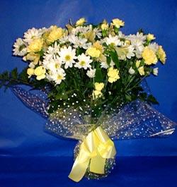 Aydın hediye çiçek yolla  sade mevsim demeti buketi sade ve özel
