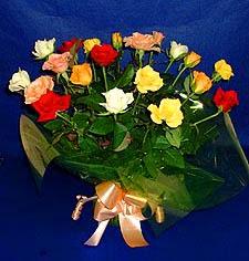 Aydın hediye çiçek yolla  13 adet karisik renkli güller