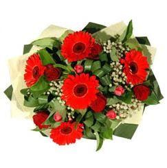 Aydın ucuz çiçek gönder   5 adet kirmizi gül 5 adet gerbera demeti