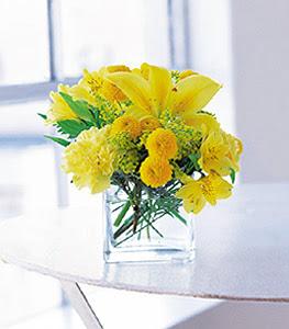 Aydın ucuz çiçek gönder  sarinin sihri cam içinde görsel sade çiçekler