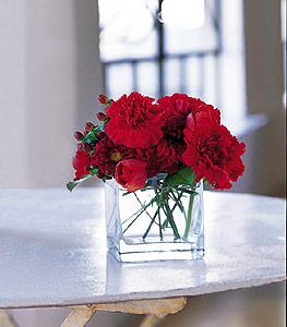 Aydın ucuz çiçek gönder  kirmizinin sihri cam içinde görsel sade çiçekler