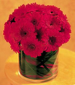Aydın ucuz çiçek gönder  23 adet gerbera çiçegi sade ve sik cam içerisinde