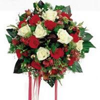 Aydın ucuz çiçek gönder  6 adet kirmizi 6 adet beyaz ve kir çiçekleri buket