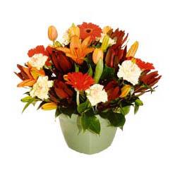 mevsim çiçeklerinden karma aranjman  Aydın çiçek yolla , çiçek gönder , çiçekçi