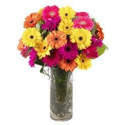 KARISIK GERBERALARDAN CAM VAZO TANZIMI  Aydın güvenli kaliteli hızlı çiçek