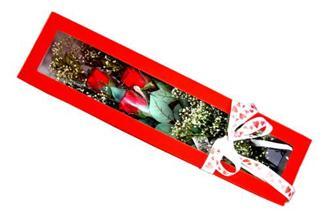 Aydın hediye çiçek yolla  Kutuda 3 adet gül