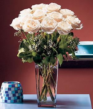 Aydın hediye sevgilime hediye çiçek  Cam yada mika vazo içerisinde 12 gül