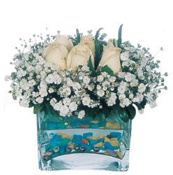 Aydın çiçekçi mağazası  mika yada cam içerisinde 7 adet beyaz gül
