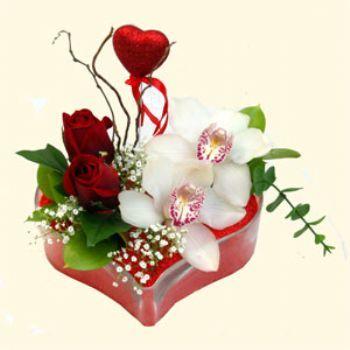 Aydın hediye sevgilime hediye çiçek  1 kandil orkide 5 adet kirmizi gül mika kalp