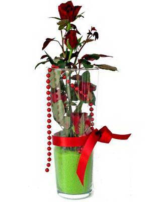 Aydın online çiçek gönderme sipariş  Cam yada mika içerisinde 9 adet kirmizi gül - sevdiklerinize özel