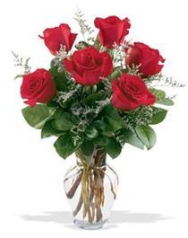 Aydın çiçek gönderme sitemiz güvenlidir  7 adet kirmizi gül cam yada mika vazoda sevenlere