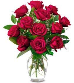 Aydın online çiçek gönderme sipariş  1 düzine kirmizi gül sevenlere özel vazo gülleri